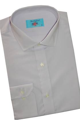 New England Pale Purple shirt